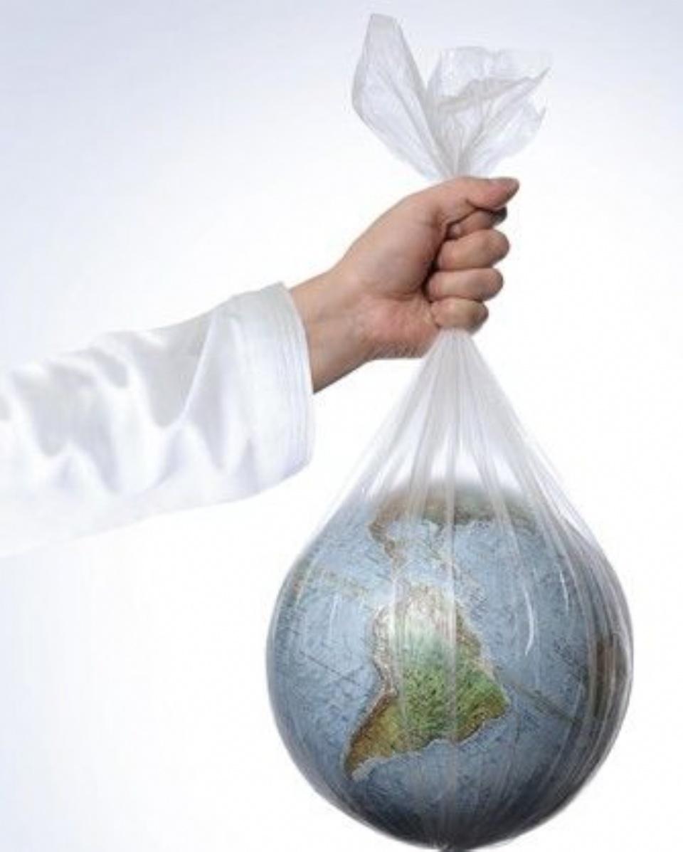 Así se celebra el día mundial del medio ambiente. Perú
