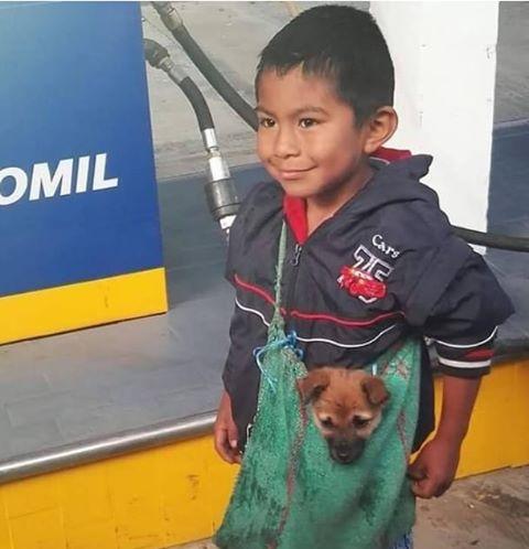 La red es conmovida por este niño peruano y el contenido de su bolsa