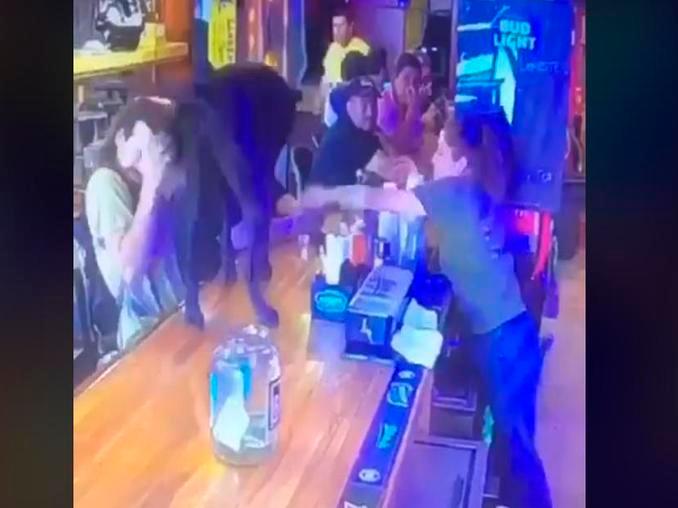 Perro entró en un bar y al resbalarse crea un gran caos