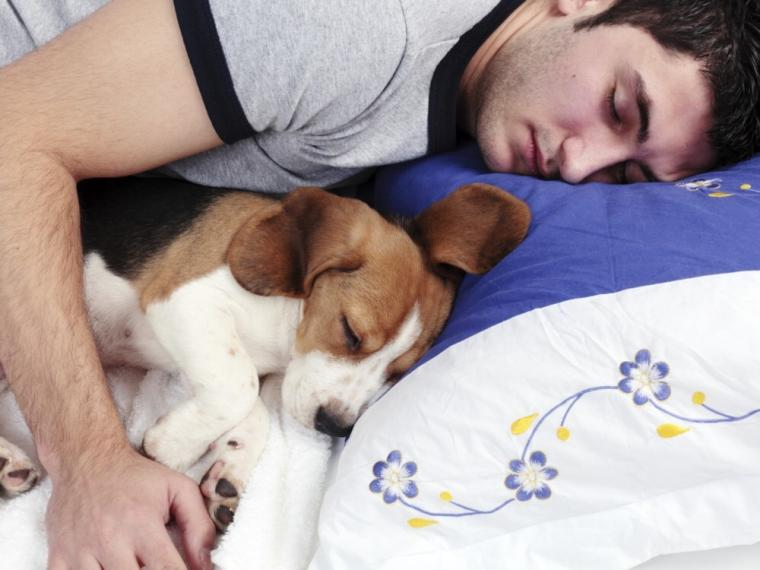 Después de ver esto no volverás a dormir con tu perro