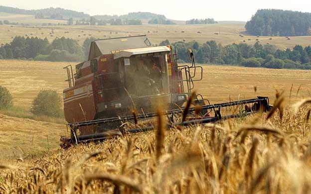 México sustituye importaciones de trigo de Estados Unidos por Rusas