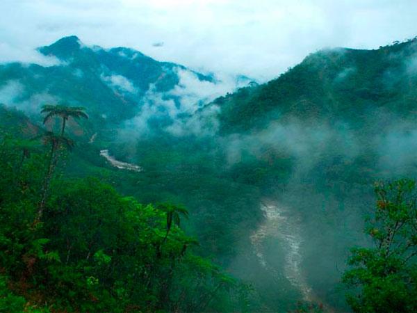 Perú: Temperatura selvática podría decender hasta los 13 grados por el friaje