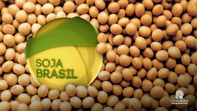 En medio de la guerra comercial China sustituye soja de USA por Brasilera