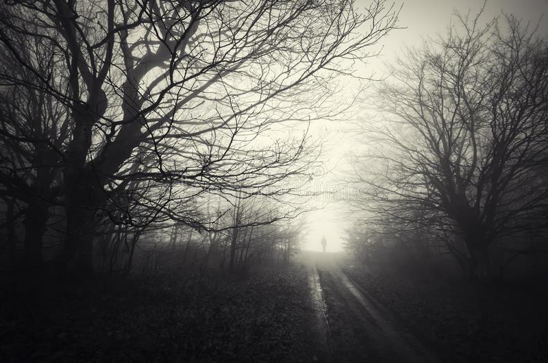 VIDEO: Presencia paranormal revela un fantasma de un solo pie