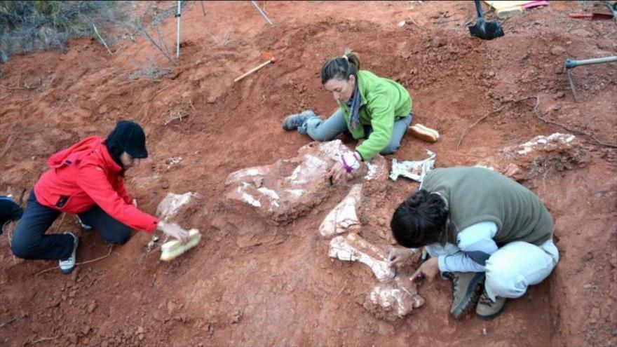 En Texas unos científicos descubren a  un abuelo de los dinosaurios