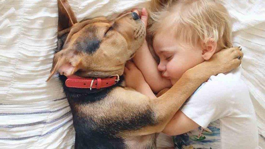 Conoce si dejar dormir a tu hijo con su mascota está bien o mal