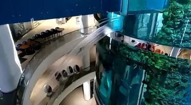 Vídeo. Uno de los acuarios cilíndricos mas grandes del mundo se rompe